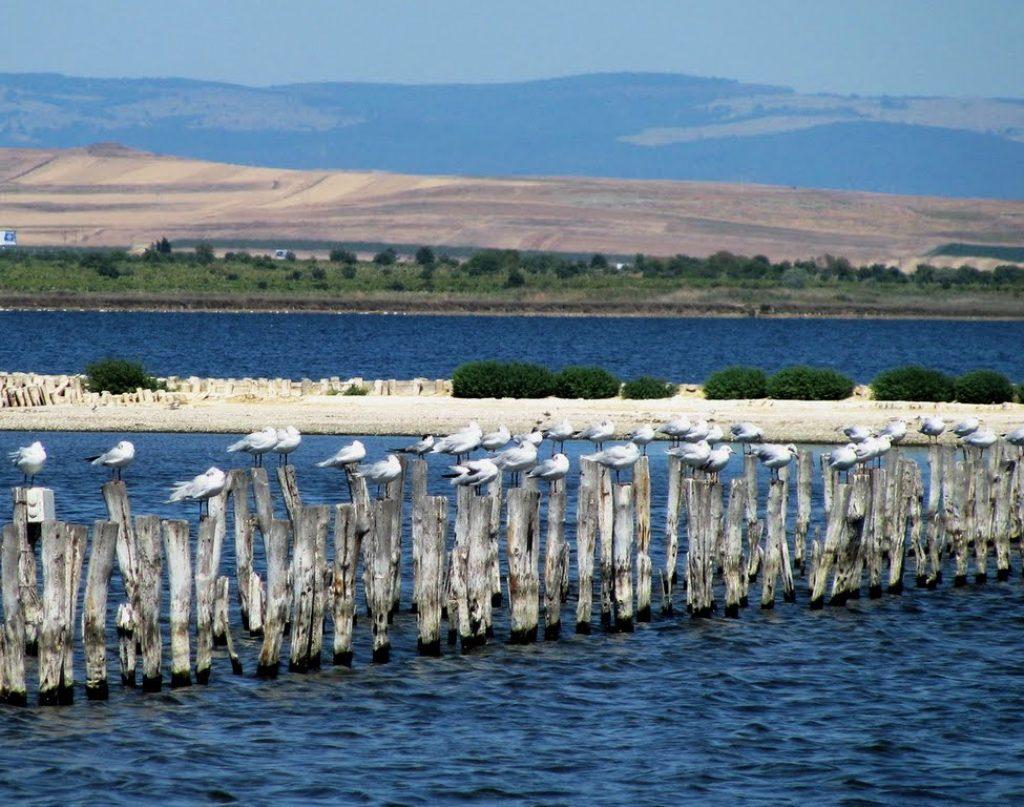 Поморийско_езеро